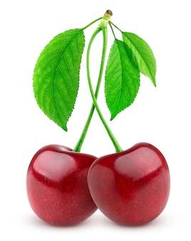 Due ciliegie fresche su sfondo bianco