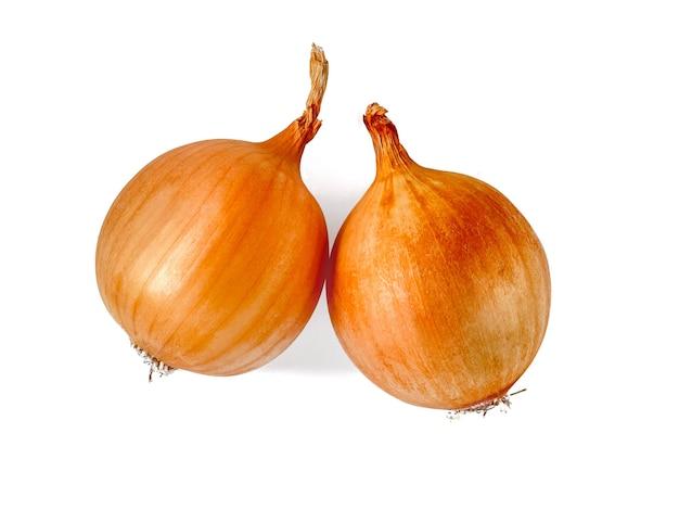 Due cipolle dorate isolate su uno sfondo bianco. concetto di stile di vita sano.