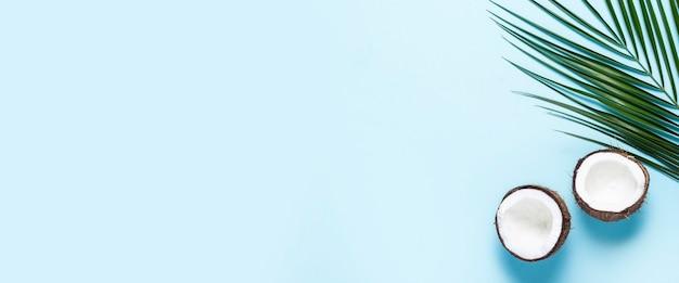 Due metà di una noce di cocco aperta e una foglia di una palma su sfondo blu