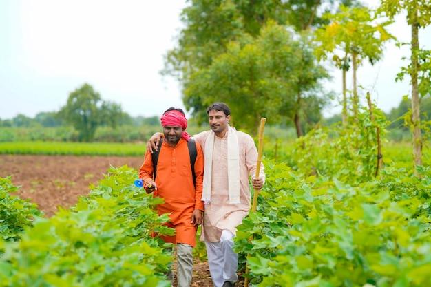 Due agricoltori indiani che lavorano e discutono al campo di cotone verde.