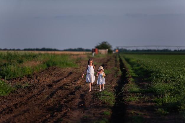 Due bambine in prendisole bianchi stanno camminando nel campo verde della salvia viola in fiore.