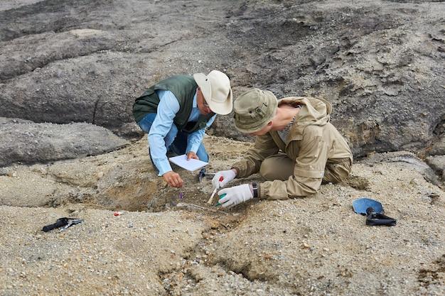 Due paleontologi estraggono osso fossile dal terreno nel deserto