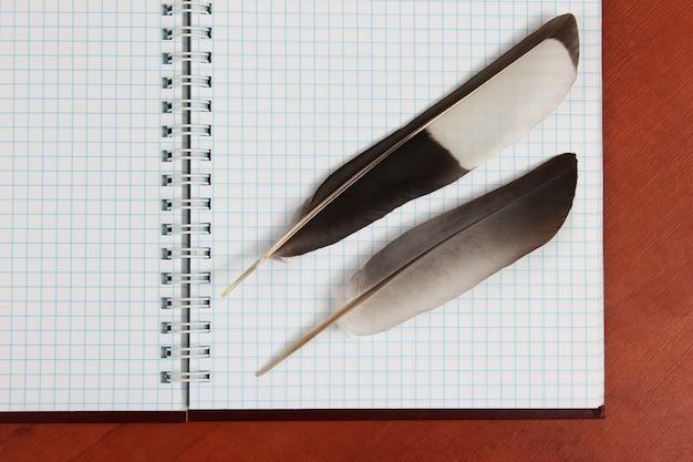 Due penne d'oca sdraiate su un taccuino vuoto aperto