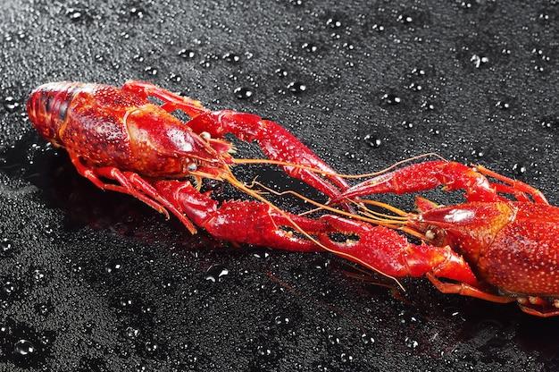 Due gamberi rossi con gocce d'acqua su fondo nero
