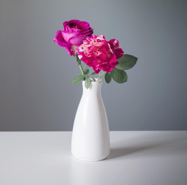 Due rose in vaso bianco su sfondo grigio