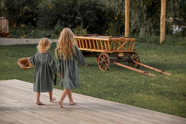 Due piccole belle bambine che camminano insieme in campagna
