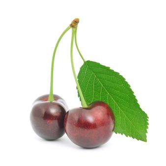 Due sweet cherry con gambo isolato e foglia su sfondo bianco