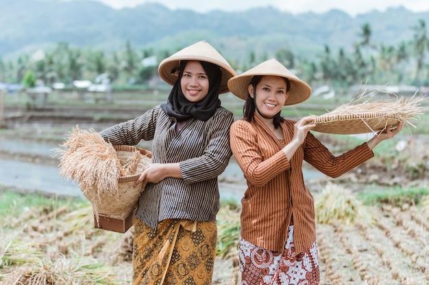 Due agricoltori giavanesi tradizionali portano i raccolti di riso con vassoi di bambù intrecciati nelle risaie