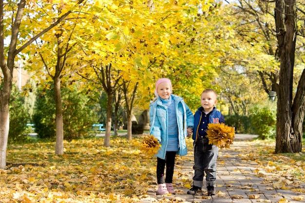 Due bambini piccoli che raccolgono mazzi di foglie autunnali gialle in un parco in piedi su un sentiero sotto gli alberi