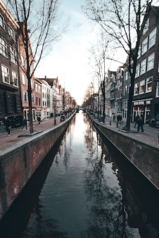 Canale olandese tipico ad amsterdam con le costruzioni e le automobili tradizionali dell'olanda