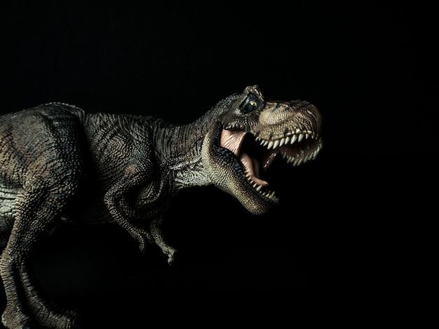 Dinosauro tyrannosaurus t-rex su nero