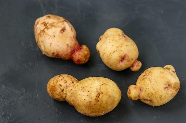 Verdure anormali organiche brutte - patate su sfondo scuro, verdure biologiche concept, foto orizzontale