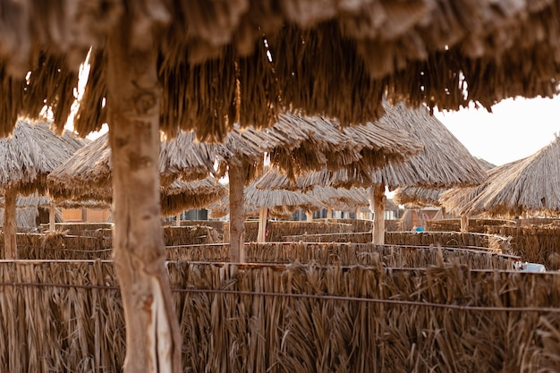 Ombrelloni in foglie di palma sulla spiaggia
