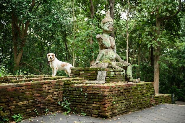 Tempiale di umong (wat umong), staue religioso antico, chiang mai, tailandia
