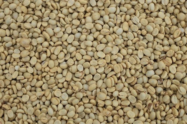 Chicchi di caffè grezzi arabica non arrostiti si chiudono