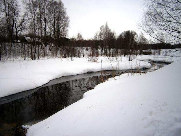 Piccolo fiume scongelante nella foresta invernale