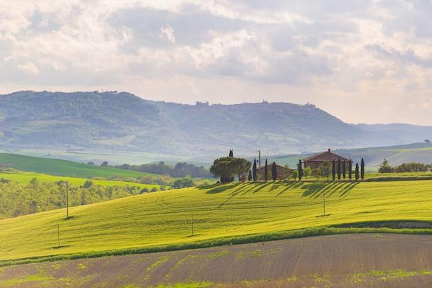 Paesaggio verde unico in val d'orcia, toscana, italia. luce mattutina con foschia e nebbia su colline coltivate e campi coltivati a cereali.
