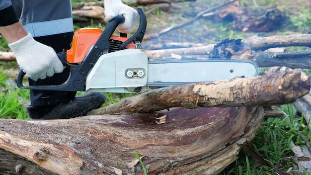 La motosega uomo irriconoscibile taglia alberi secchi