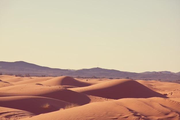 Dune di sabbia incontaminate nel deserto remoto