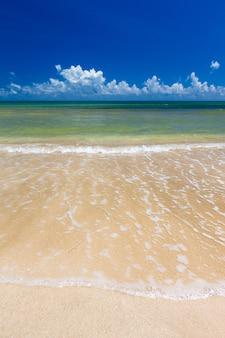 Spiaggia tropicale incontaminata in sri lanka