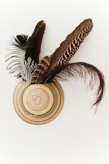 Insolita soluzione interna vaso da muro in ceramica e piume di uccelli diversi