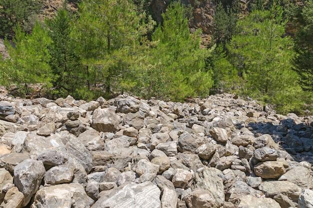 Paesaggio insolito nel parco nazionale di samaria sull'isola di creta, in grecia
