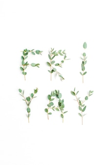 Parola urbana friyay. l'ultimo giorno della settimana lavorativa concetto fatto di ramo di eucalipto su sfondo bianco. disposizione piatta, vista dall'alto