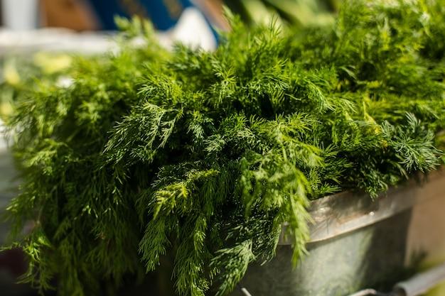 Cibo utile per vegetariani, molta erba verde per insalate è in una scatola in vendita