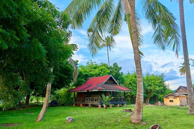 Alloggi per vacanze. una casa nella giungla su un'isola.