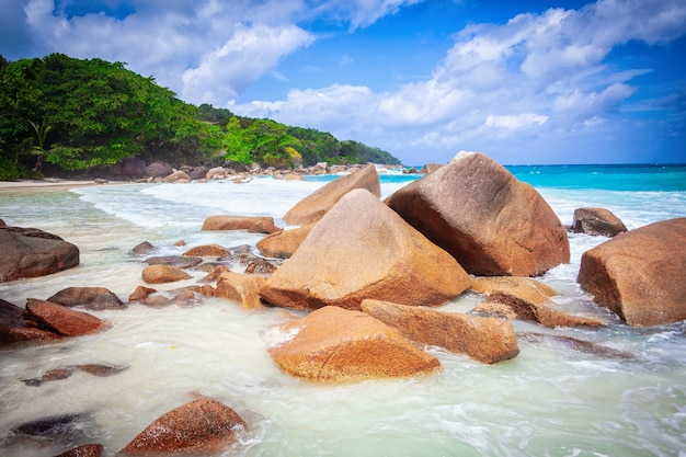 Vacanze estive vacanze sfondo carta da parati soleggiata tropicale caraibica paradiso spiaggia di sabbia bianca