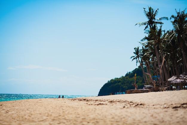 Vacanze estive vacanze sfondo carta da parati soleggiata spiaggia tropicale caraibica esotica paradiso con w