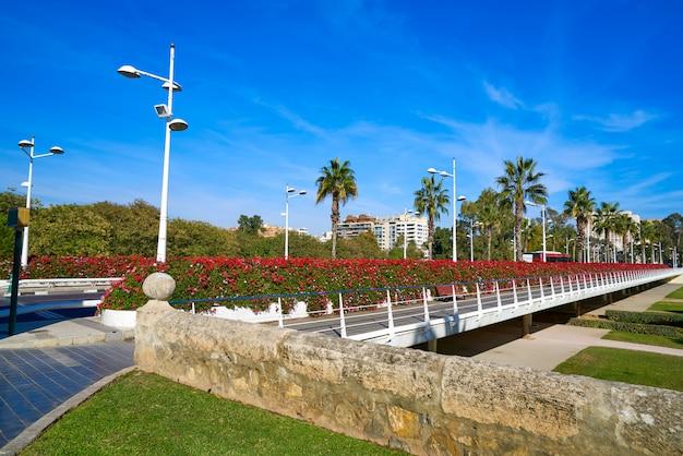 Ponte dei fiori di valencia puente de las flores