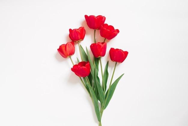 San valentino piatto lay.un bouquet di bellissimi fiori di tulipano rosso su sfondo bianco.