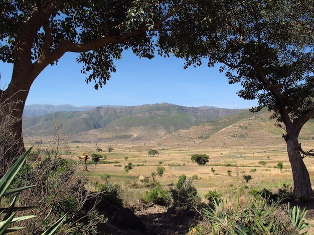 La valle in etiopia, africa