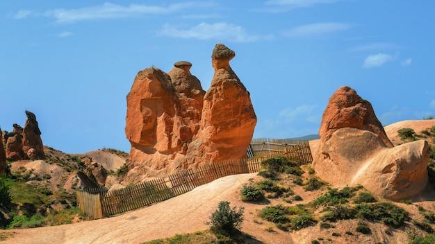 Valle piena di formazioni rocciose uniche in cappadocia, turchia