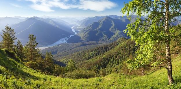 Valle del fiume katun nei monti altai in una mattina d'estate