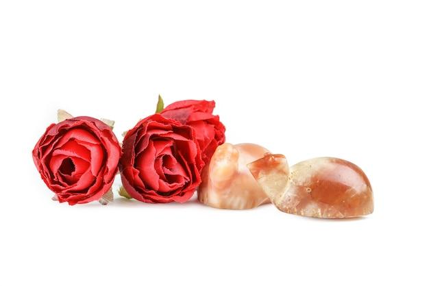 Preziose e preziose perle antiche di tartaruga corniola pyu con rose rosse su sfondo bianco
