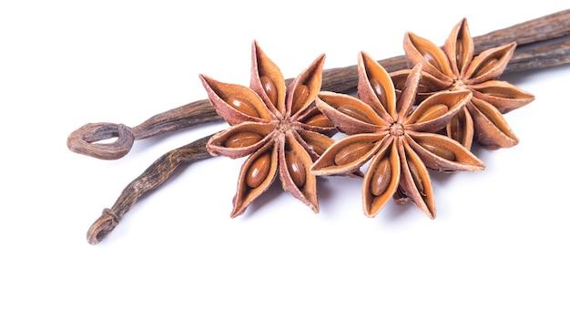Baccello di vaniglia e anice stellato su sfondo bianco
