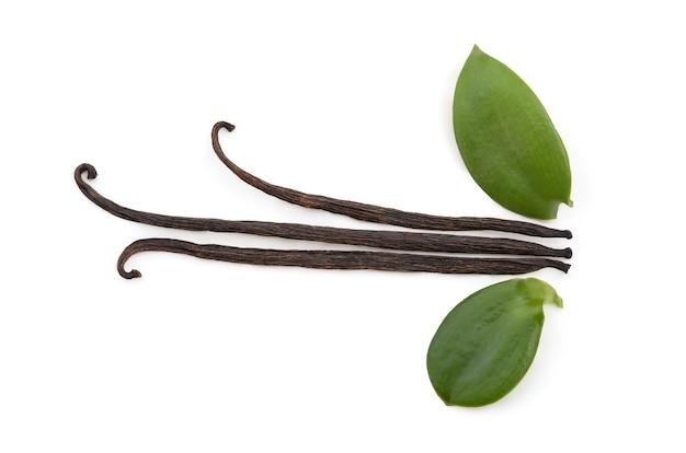 Foglie verdi di vaniglia e baccelli secchi isolati su sfondo bianco con tracciato di ritaglio.vista dall'alto,piatta