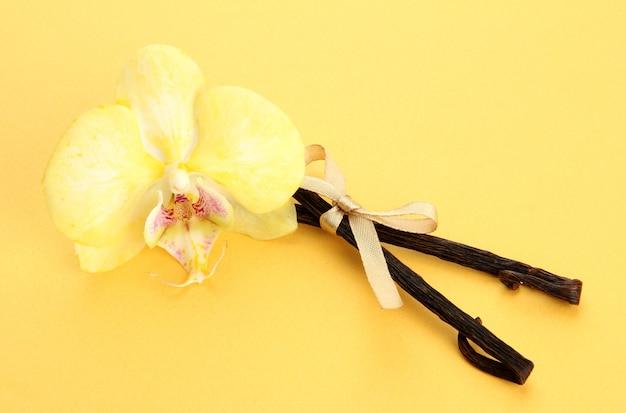 Baccelli di vaniglia con fiore, su sfondo giallo