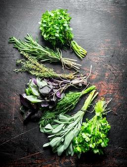 Varietà di erbe verdi fresche sul tavolo rustico scuro.