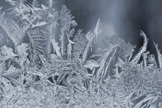 Varietà di modelli di gelo su una finestra invernale