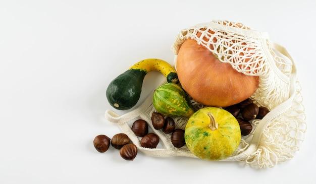 Varietà di zucche e castagne decorative di halloween in borsa a rete bianca isolata. concetto locale di acquisto senza plastica. zero rifiuti sani