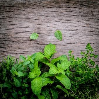 Varie erbe aromatiche e spezie installate su fondo di legno.