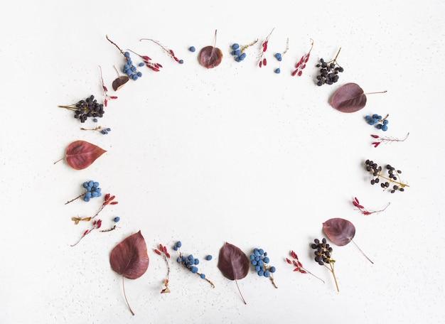 Vari frutti di bosco e foglie di alberi selvatici telaio isolato su uno sfondo bianco texture e spazio aperto per il testo. sfondo di botanica. vista dall'alto. lay piatto
