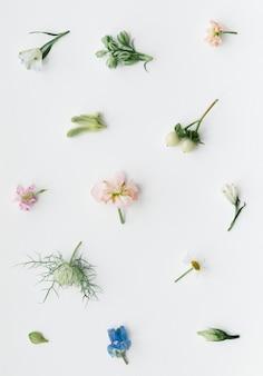 Varie composizioni di fiori freschi