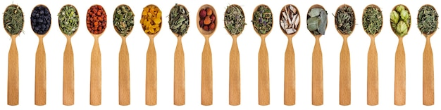 Varie erbe medicinali in cucchiai di legno isolati su uno sfondo bianco.