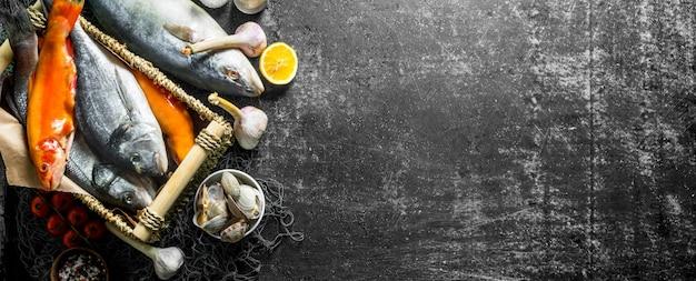 Vari crudi di pesce con ostriche e aglio. su rustico scuro