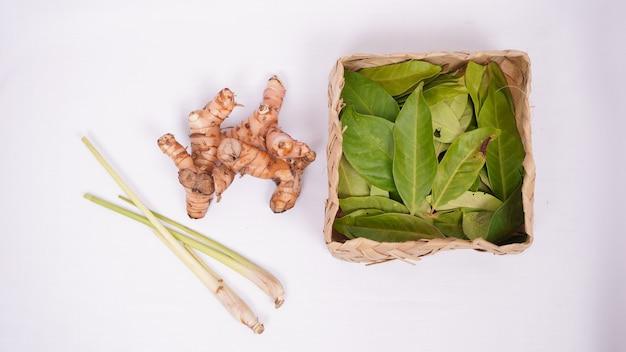 Varie spezie, citronella, foglie di alloro e galanga isolate su sfondo bianco