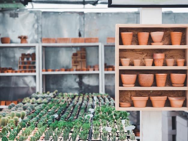 Vari tipi e dimensioni di vasi in terracotta su ripiano in legno